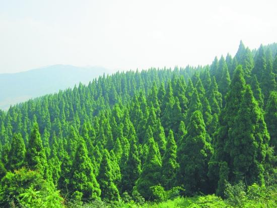 安溪风山的风景