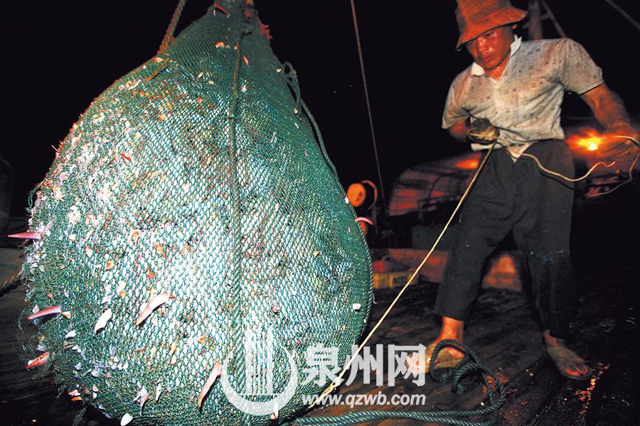 捕售海鲜背后是辛劳