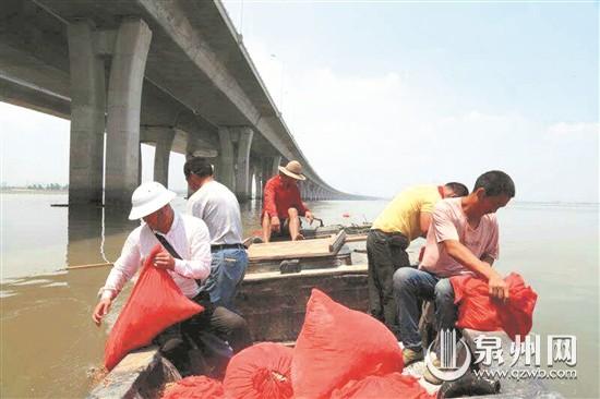 石狮蚶江举行集体海葬活动:骨灰撒大海 情意留人间
