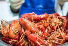"""(国际·图文互动)(1)从尼罗河畔到中国餐桌——一只""""洋""""小龙虾的36小时旅程"""